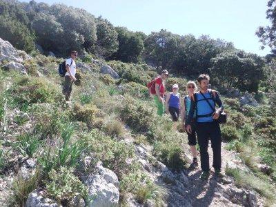 Trekking in the mountain of Grazalema, 6 hours