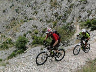 Mountain bike rental half a day