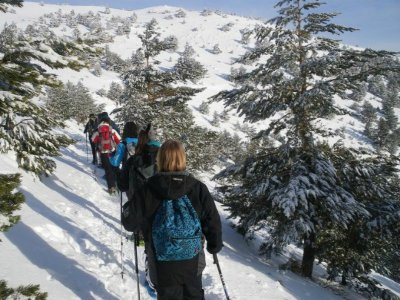 Snowshoeing + Night-Stay Bungalow in Cercedilla