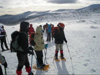 1-Day Snowshoes Rental in Cercedilla
