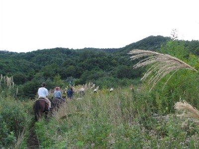 Horse riding route by Sierra de Sax, 1 hour