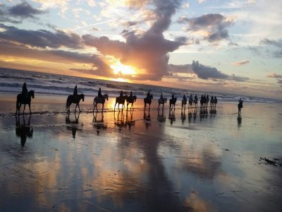 Christmas horseback ride, Doñana Park, 2h