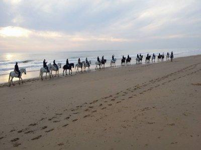 Horseriding, Winter Holidays, Doñana, 2h, children