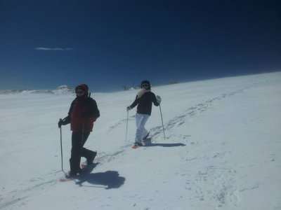 Teambuilding and snowshoeing+Meal, La Molina
