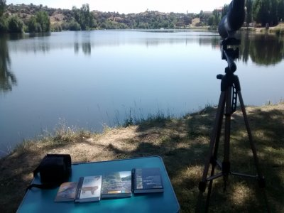 Introduction to ornithology in Ledesma