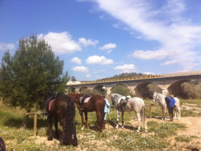Horse riding excursion in Llíria. 1 hour.