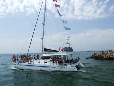 Tour in catamaran from Lloret for firms