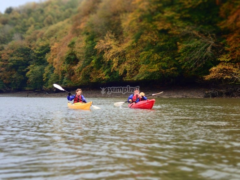 Kayaking in the wooded landscape