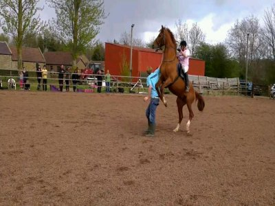 Vogrie Riding School