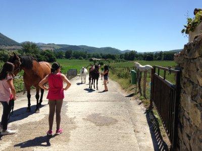 Morning Horse Riding Camp, Navarra, 5 Days