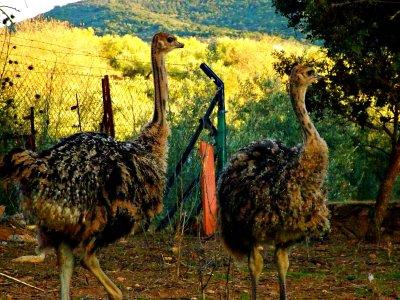 Valle de los Molinos Parques Zoológicos