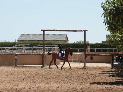 Hípica Sierra Helada Clases de Equitación