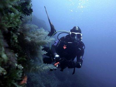Soller Divers