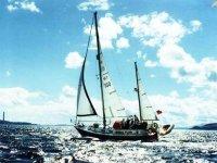 Beija Flor sailing along