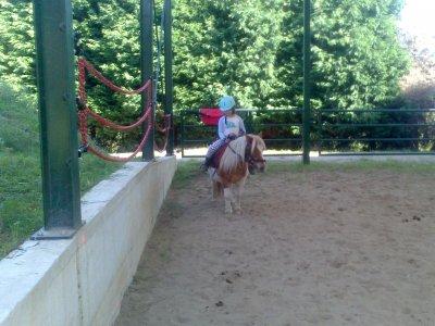 Pony Ride in Arboces 45 Minutes