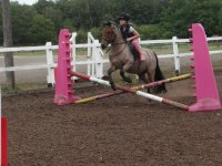 Learn some new skills with Chobham Equestrian Centre