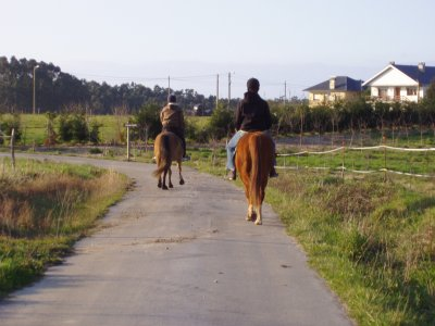1-Hour Horse Ride in Arboces and Castello