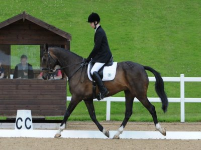 Scropton Riding and Driving Centre