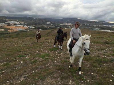 Hispano Lusitano Arucas a caballo