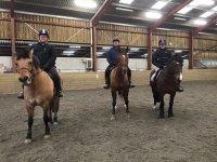 Group lessons in  Alstone Alstone Court Riding Establishment