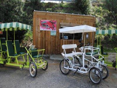 Quadricycle bike rental in Olvera 2h