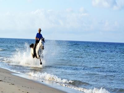 Horse riding route in Playa de Bolonia