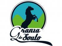 Granxa do Souto Clases de Equitación