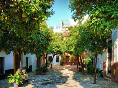 Guided tour of Medieval Sevilla 1h 15 min