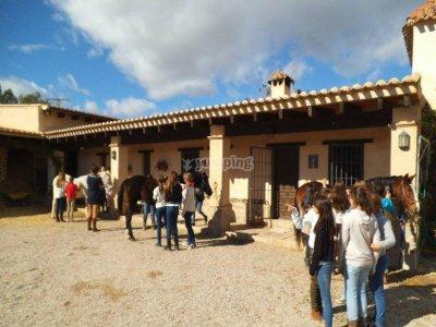 Horse Riding + Mini Lesson in El Valle, Murcia