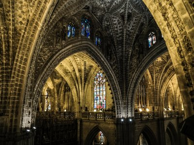 Guided visit to Sevilla Monumental-Cathedral 1h15'