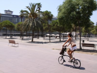 1-Day Bike Rental in Barcelona
