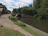 Walk with your dog in Kingsbury Water Park