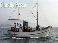 Pesca Deportiva en el Barco Chasula Pesca