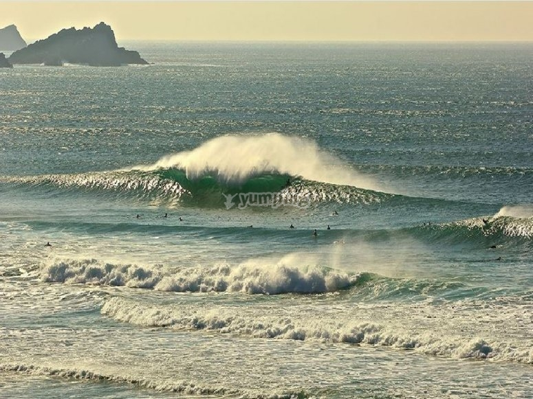 Friendly wave