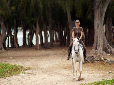 Horse ride on Huelva beach during 90 minutes