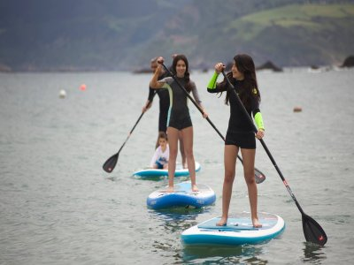 Rental Of Paddle Surfing Equipment, Huelva, 2h