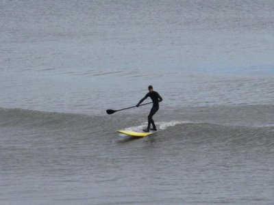 Fluid Concept Paddle Boarding