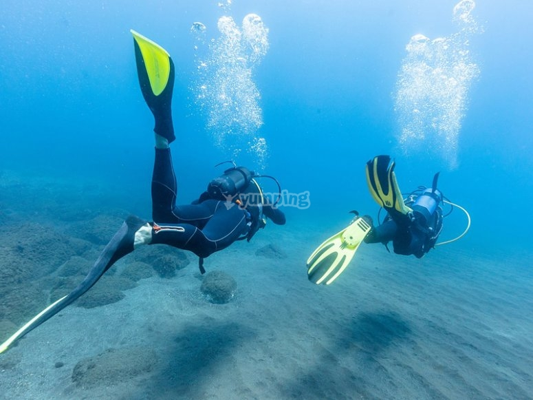 Become a better dive buddy