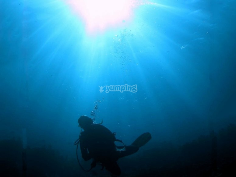 Dive up to 40m deep