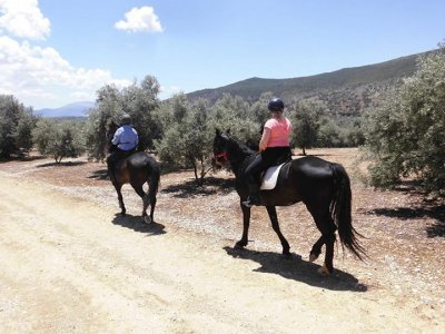 2-hour horse ride in Salinas with guide