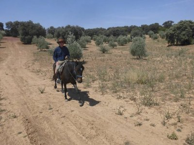Ride by horse to Los Arroyos with lunch