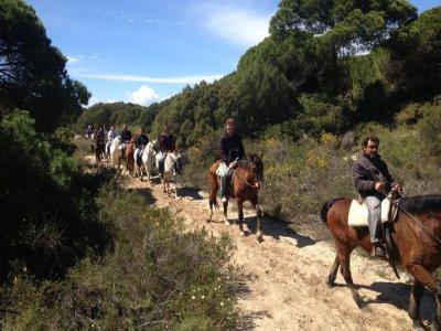Romantic horse-riding route, Doñana & El Rocío