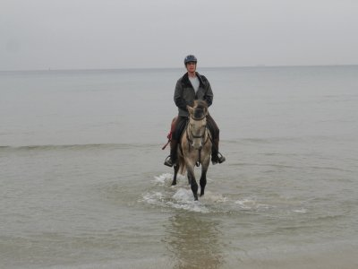 Horse Riding tour in Playa Larga beach, Tarragona