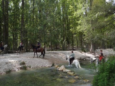 Horseride in Guadalentin and Turrilla rivers