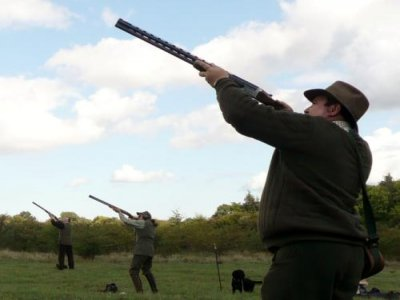Flock Stock and Barrel Simulated Game Shooting