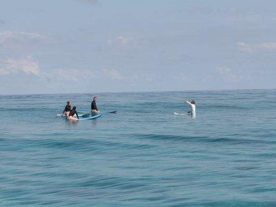 Surf Equipment Hire Borth