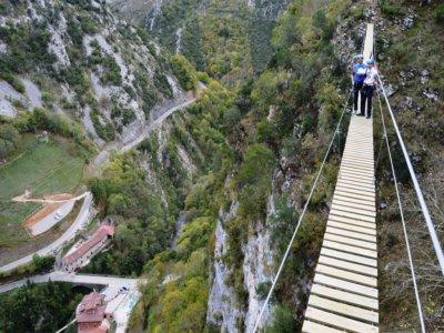 Course of monkey bridges + 2 zip lines in Asturias