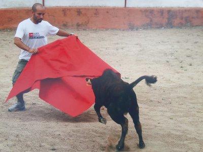 Team building+bullfight+overnight in Toledo