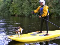 Doggie SUP! Llangolle