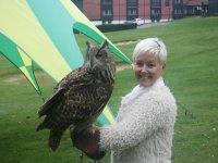 Falconry UK